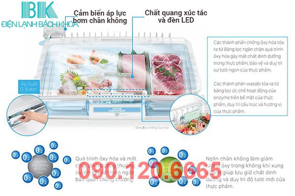ngăn chân không tủ lạnh Hitachi 2